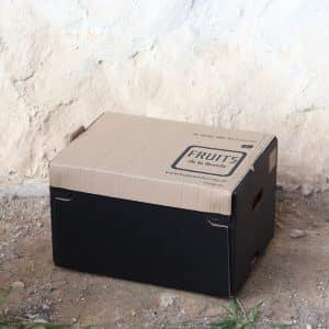 caja de naranjas ecologicas